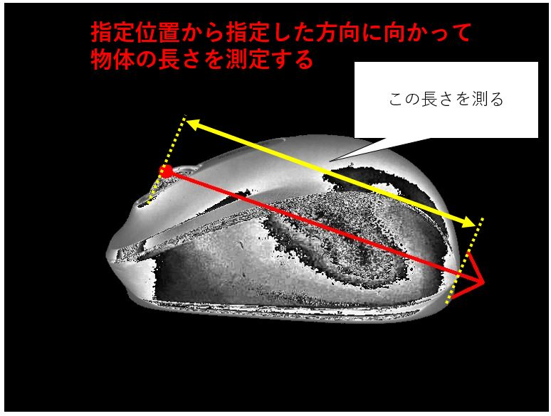 長さを計測する対象画像の説明
